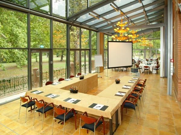 historisches hotel im park in magdeburg mieten partyraum und eventlocation partyraum. Black Bedroom Furniture Sets. Home Design Ideas